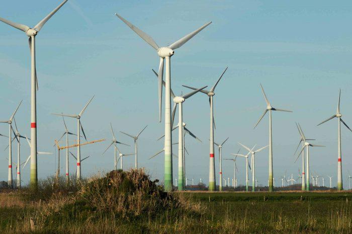 BUND und Windkraft Offener Brief an Prof. Hubert Weiger vom 17. April 2016
